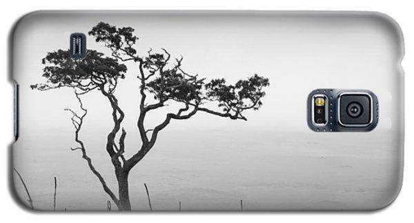 Lone Tree Galaxy S5 Case by Takeshi Okada