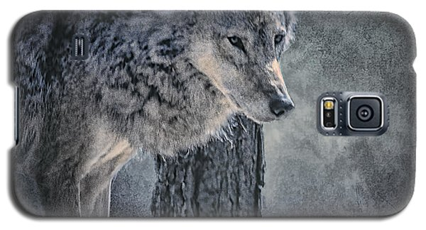 Galaxy S5 Case featuring the photograph Lone Wolf by Brian Tarr