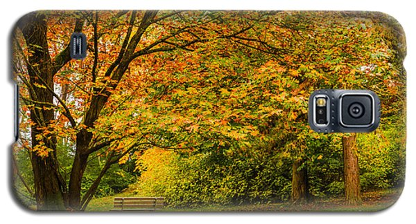 Lonely Autumn Bench Galaxy S5 Case