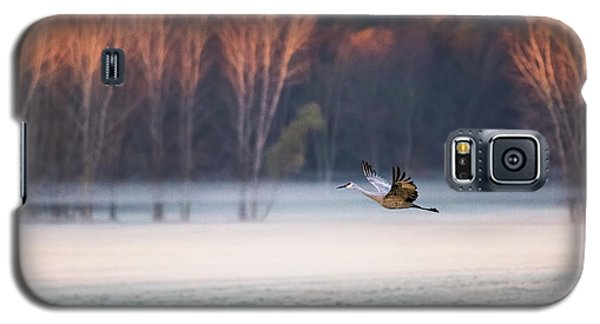 Crane Galaxy S5 Case - Lonely Flyer by Jane Luo