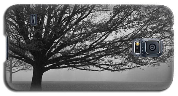 Galaxy S5 Case featuring the photograph Lonely Low Tree by Maj Seda