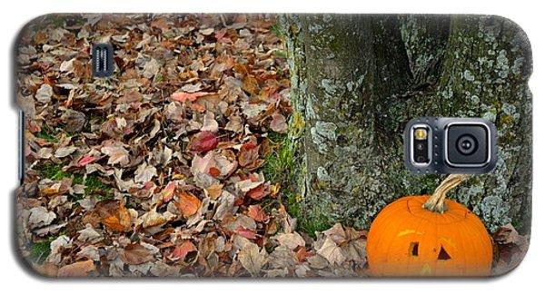Lonely Pumpkin Galaxy S5 Case