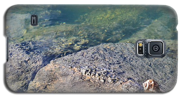 Galaxy S5 Case featuring the photograph Lonely Shell by Patricia Greer