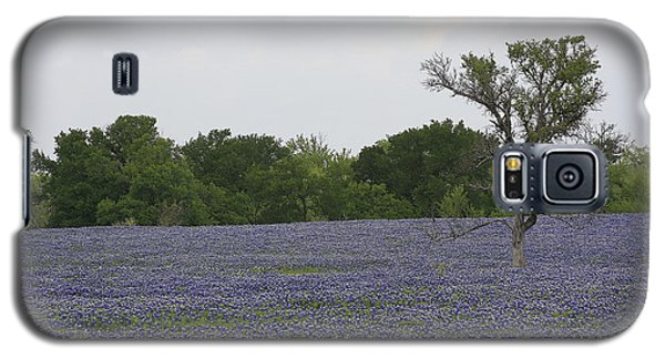 Lonely Tree In Bluebonnets Galaxy S5 Case