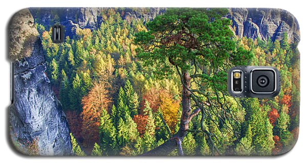Lonely Tree In The Elbe Sandstone Mountains Galaxy S5 Case