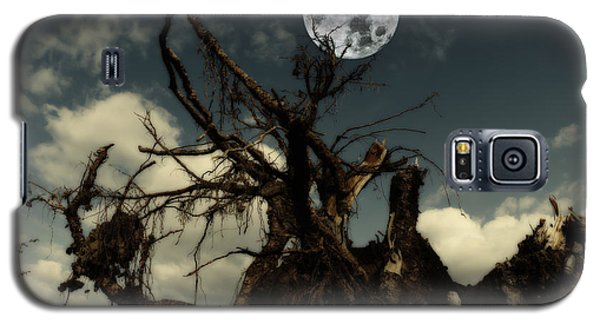 Lonely Tree Roots Reaching For A Full Moon Galaxy S5 Case