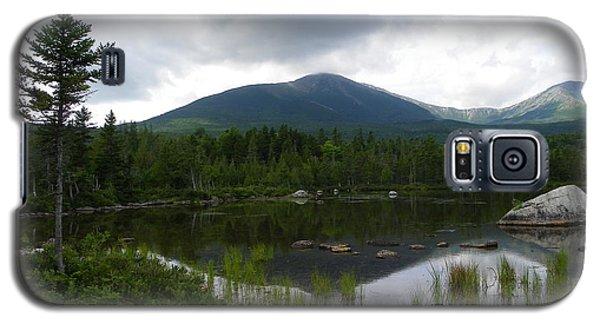 Lonesome Pine At Sandy Stream Pond Galaxy S5 Case