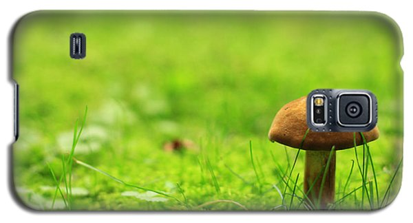 Lonesome Wild Mushroom On A Lush Green Meadow Galaxy S5 Case