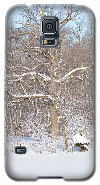Galaxy S5 Case featuring the photograph Loney Ash by Dacia Doroff