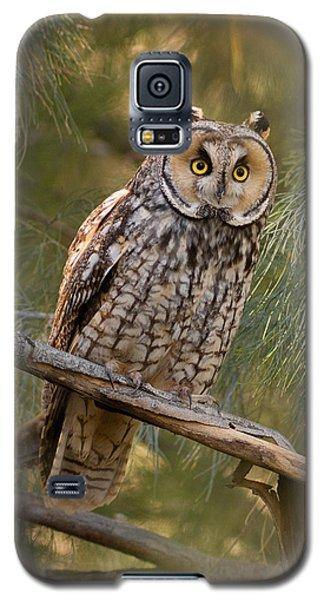 Long-eared Owl Galaxy S5 Case by Doug Herr