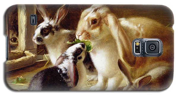 Long-eared Rabbits In A Cage Watched By A Cat Galaxy S5 Case by Horatio Henry Couldery