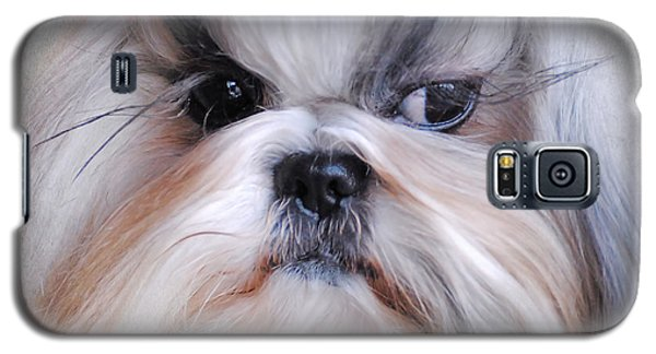 Long Haired Shih Tzu Galaxy S5 Case