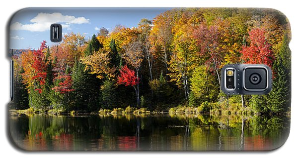 Long Pond Autumn Galaxy S5 Case