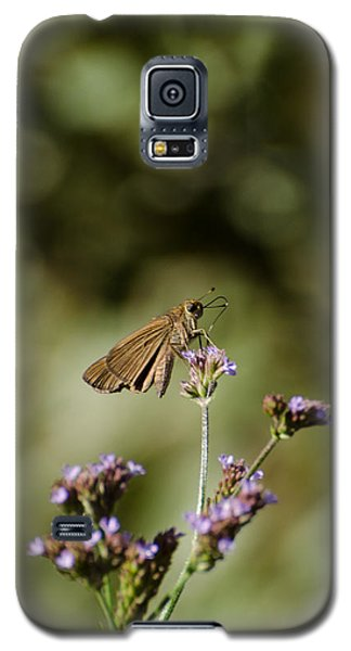 Long-winged Skipper Butterfly Galaxy S5 Case