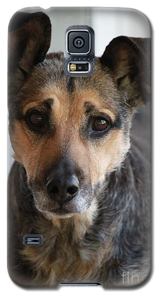 Look In To Her Big Brown Eyes Galaxy S5 Case