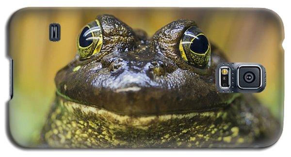 Look Into My Eyes Galaxy S5 Case