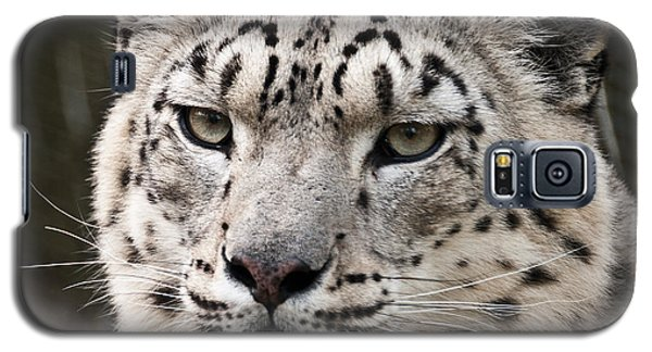Look Into My Leopard Eyes Galaxy S5 Case