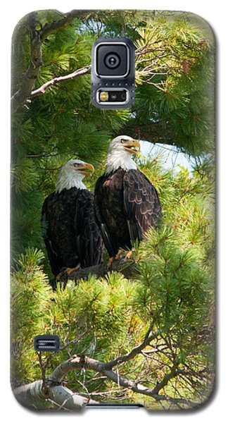 Galaxy S5 Case featuring the photograph Look Over There by Brenda Jacobs