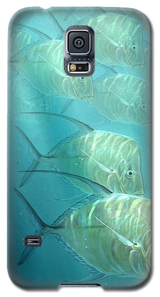 Lookdowns Galaxy S5 Case by Aaron Blaise