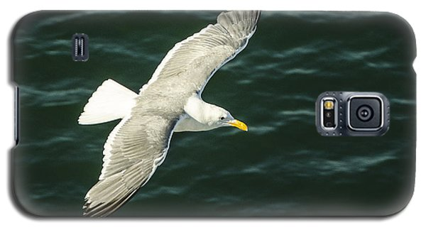 Galaxy S5 Case featuring the photograph Looking For A Handout by JRP Photography