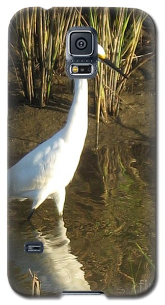 Galaxy S5 Case featuring the photograph One Step At A  Time by John Glass