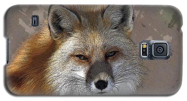 Looking Foxy Galaxy S5 Case