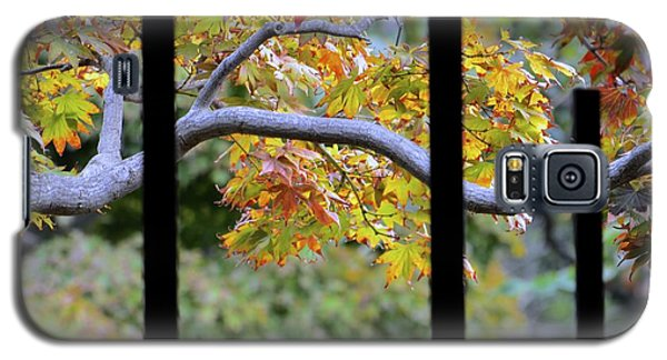 Galaxy S5 Case featuring the photograph Looking In The Japanese Garden by Alex King