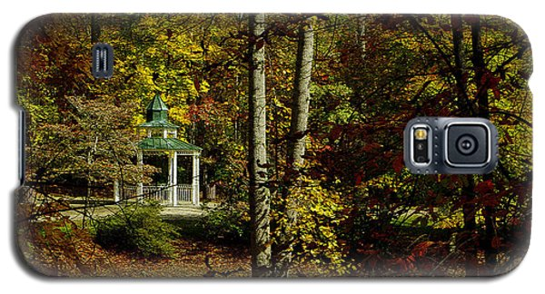 Galaxy S5 Case featuring the photograph Looking Into Fall by James C Thomas