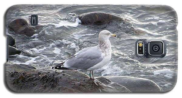 Galaxy S5 Case featuring the photograph Looking Out To Sea by Eunice Miller