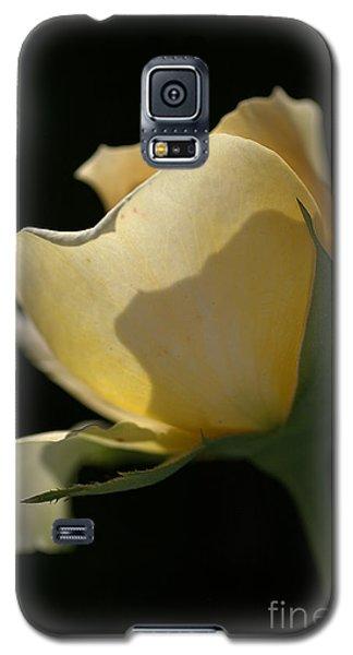 Looking Through Galaxy S5 Case