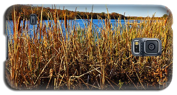 Galaxy S5 Case featuring the photograph Looking Through The Reeds by Lawrence Burry