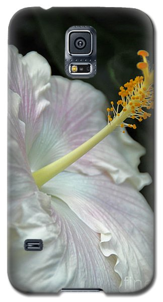 Looking Up Galaxy S5 Case by Cindy Manero