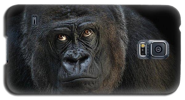 Gorilla Galaxy S5 Case - Looking Up by Joachim G Pinkawa