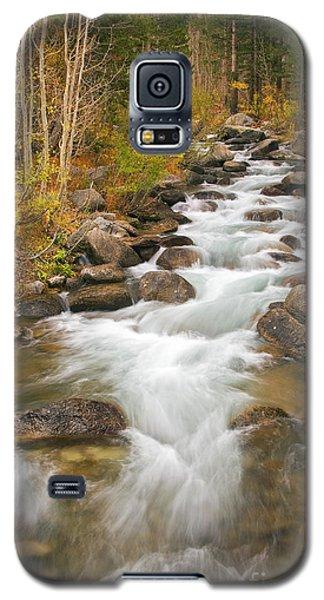 Looking Upstream Galaxy S5 Case