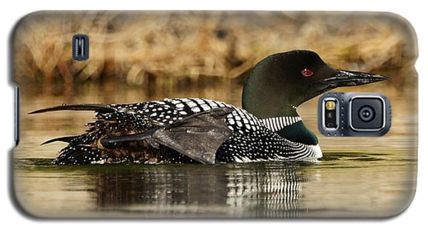 Galaxy S5 Case featuring the photograph Loon 10 by Steven Clipperton