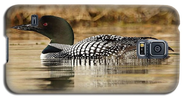 Galaxy S5 Case featuring the photograph Loon 11 by Steven Clipperton