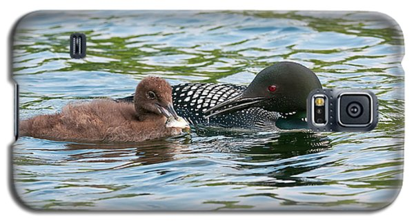 Loon And Baby Galaxy S5 Case