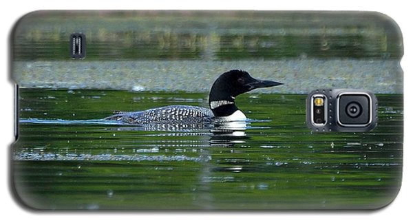 Galaxy S5 Case featuring the photograph Loon On Indian Lake by Steven Clipperton