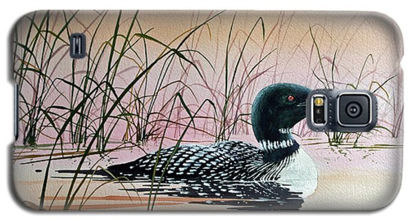 Loon Sunset Galaxy S5 Case by James Williamson