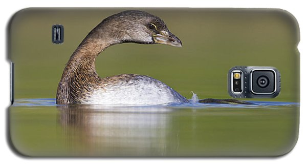 Galaxy S5 Case featuring the photograph Loss-neck Grebe by Bryan Keil