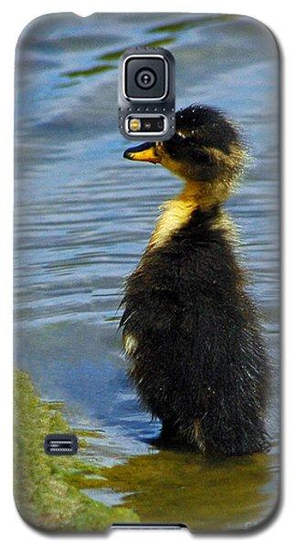 Lost Duckling Galaxy S5 Case