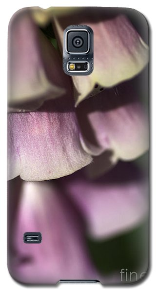 Galaxy S5 Case featuring the photograph Lost In A Foxglove by Joy Watson