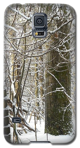 Lost In Nature Galaxy S5 Case