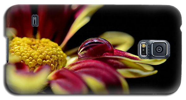 Galaxy S5 Case featuring the photograph Lost On A Petal by Michelle Meenawong