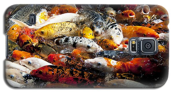 Lots Of Hungry Koi  Galaxy S5 Case by Wilma  Birdwell