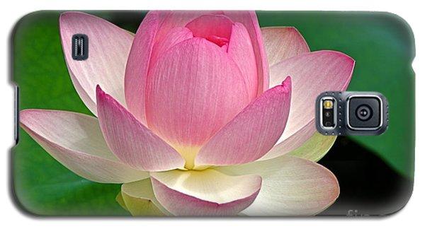 Lotus 7152010 Galaxy S5 Case