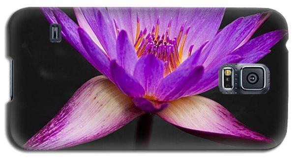 Lotus Galaxy S5 Case