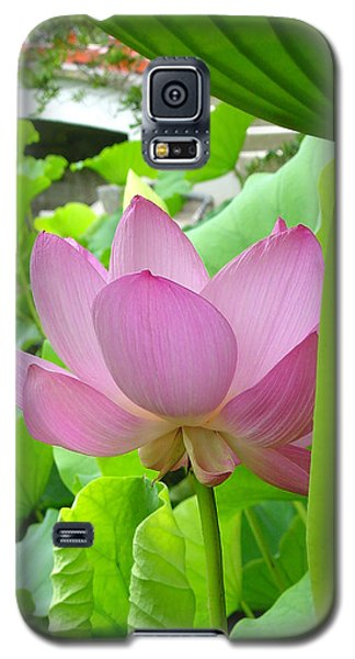 Galaxy S5 Case featuring the photograph Lotus And Bridge by Larry Knipfing