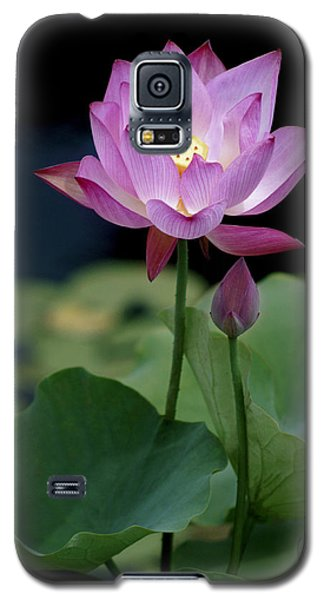 Galaxy S5 Case featuring the photograph Lotus Blossom by Penny Lisowski