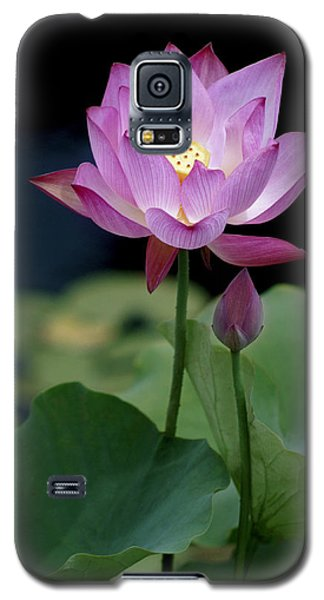 Lotus Blossom Galaxy S5 Case